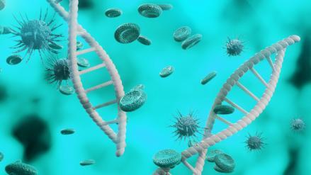 Mutáció koronavírus India