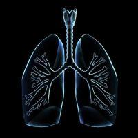 bronchitis, hörghurut
